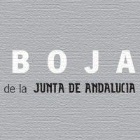Incoación del expediente de declaración BIC del Convento de la Concepción. BOJA del 24 de abril de 2007