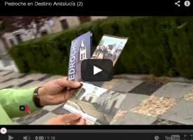 Pedroche en «Destino Andalucía». Canal Sur TV, año 2013