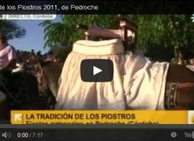 """Fiesta de los Piostros 2011. Reportaje en """"Andalucía Directo"""", Canal Sur TV"""