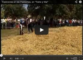 Nuestras Tradiciones 2008 en «Tierra y Mar» de Canal Sur TV