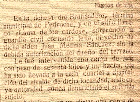 Hurtos de leña en Pedroche a principios del S. XX