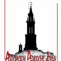 Asociación Pedroche Joven. Boletín nº 1, año 2008