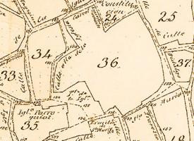 Plano de Pedroche de 1888