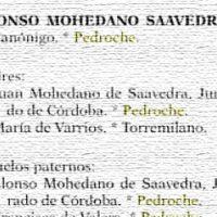 Alonso Mohedano Saavedra. Los expedientes de limpieza de sangre de la catedral de Sevilla (Genealogías), por Adolfo de Salazar Mir. Año 1995